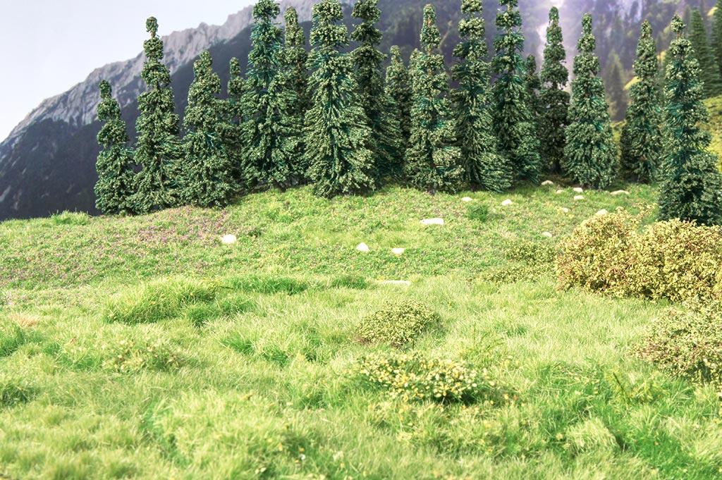 Vegetazione di montagna