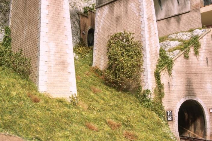 Vegetazione sotto il ponte