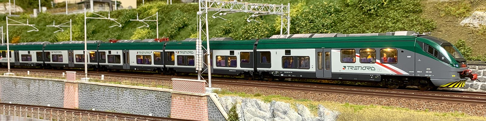 ETR425-Trenord Vitrains